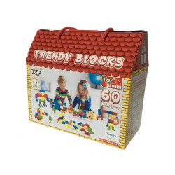 TRENDY BLOCKS 60PCS